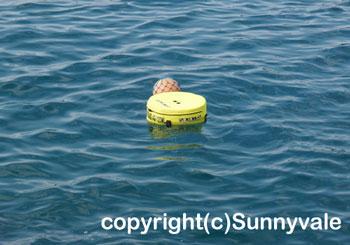 水中警報装置