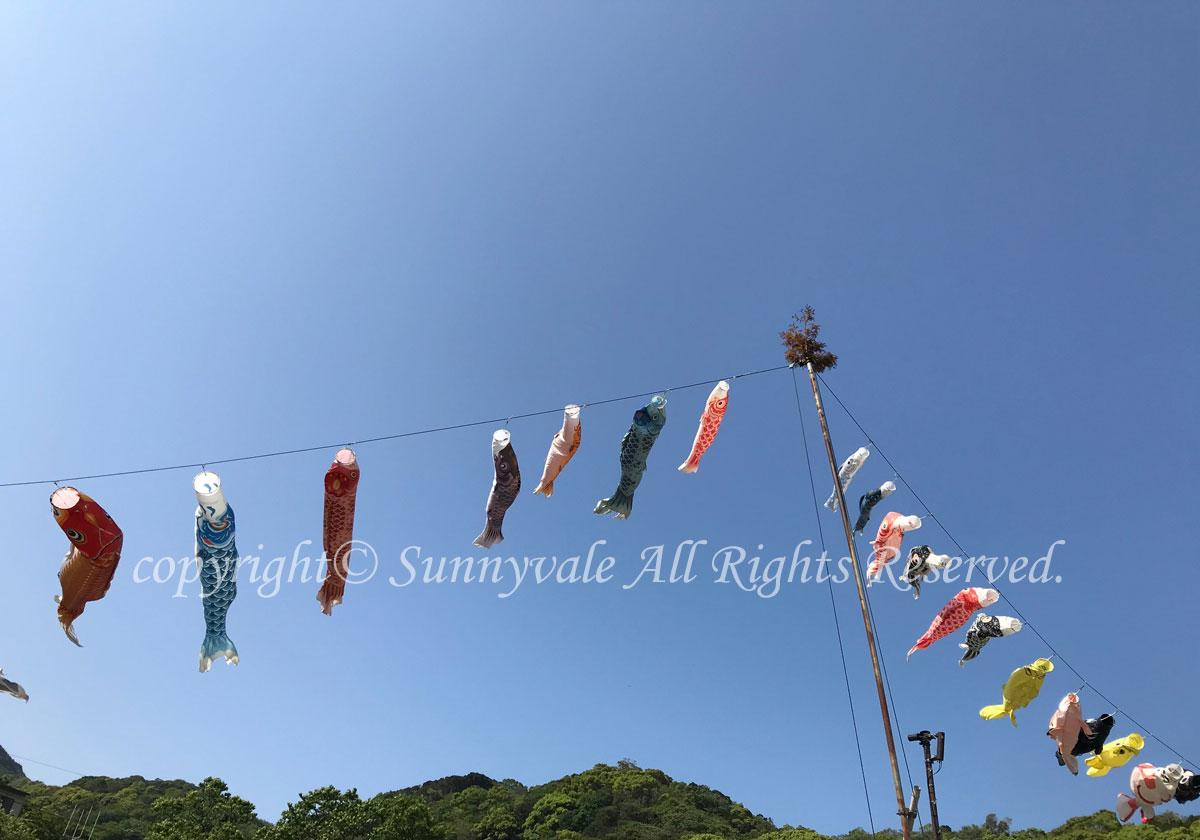 大瀬崎で、レスキューダイバーコース(^^)/
