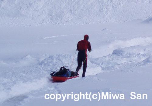 「流氷ダイビング」 みわさん撮影