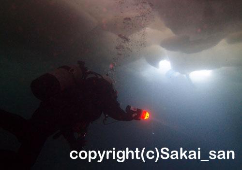 「流氷ダイビング」さかいさん撮影