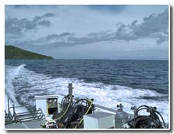 サニーベイル、西表島へ初上陸!