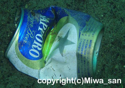 「空き缶」 みわさん撮影