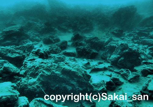 「溶岩」 さかいさん撮影