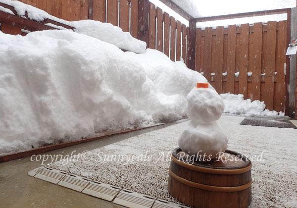 雪を見ながら露天風呂